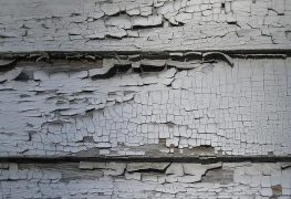 Florida Real Estate News - Council members call for stricter NYCHA oversight amid lead paint scandal