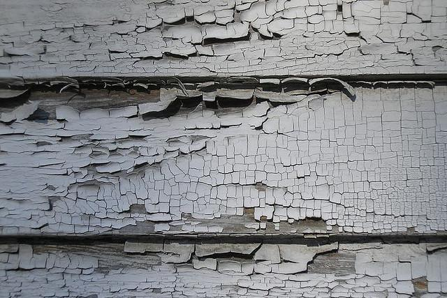 Florida Real Estate News – Council members call for stricter NYCHA oversight amid lead paint scandal